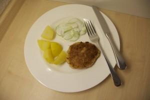 Teller mit Fischfrikadelle, Salzkartoffeln und Gurkensalat